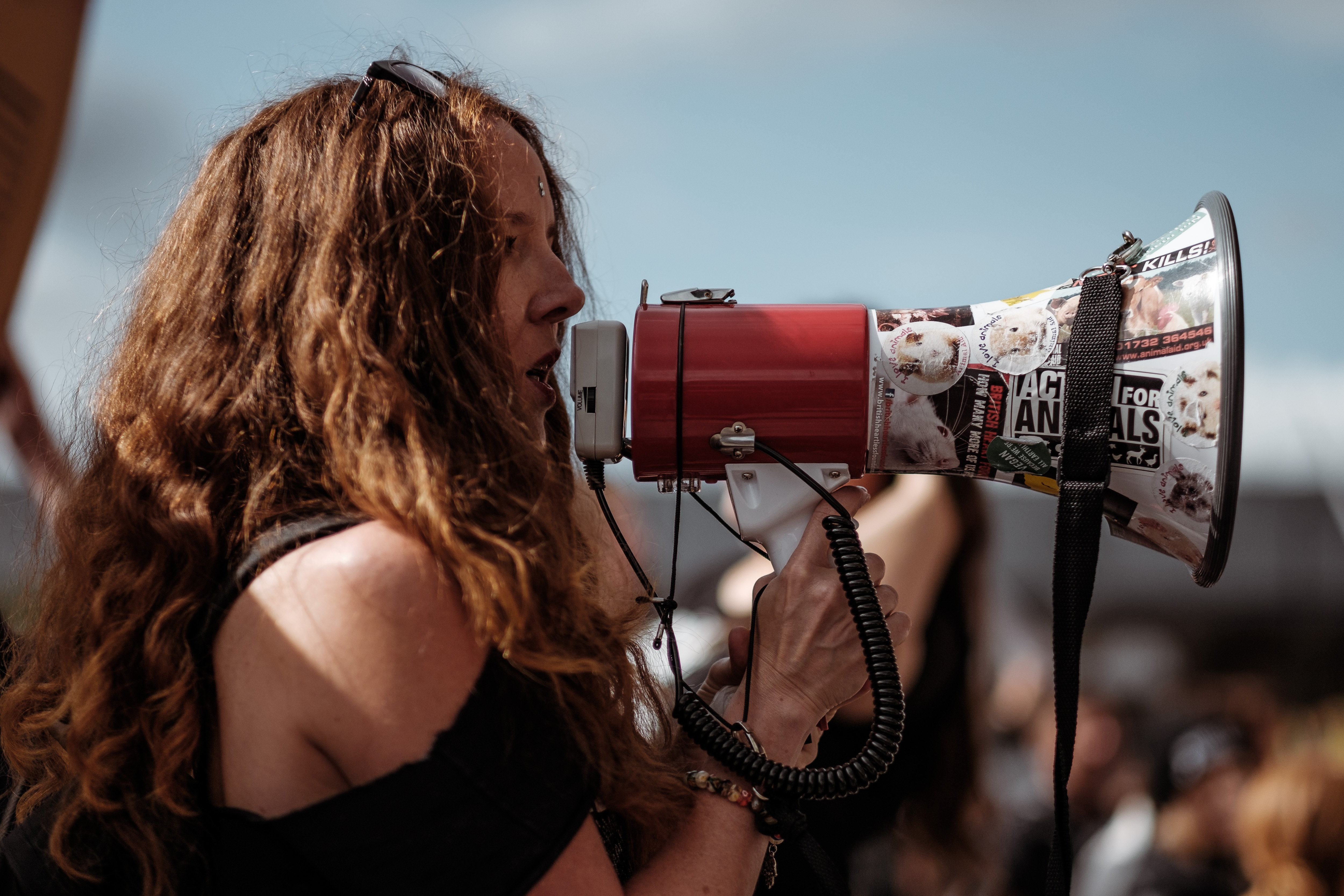 Niederlande – 125 Tierschutzaktivisten besetzten Schweinestall