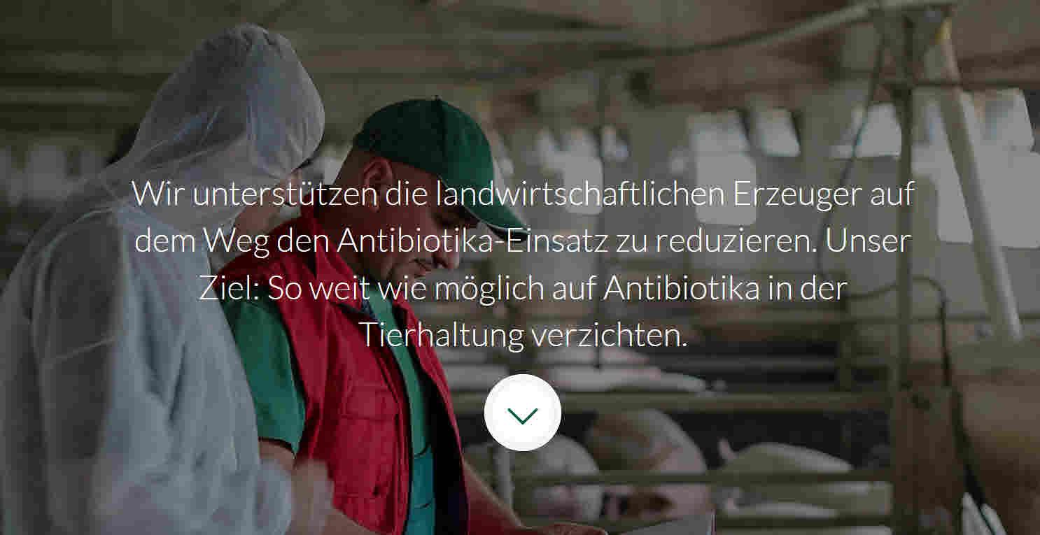36 Prozent weniger Antibiotika im QS-System eingesetzt