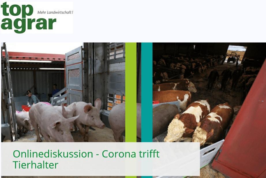 Topagrar-Webinar für Landwirte zum Thema Schweinestau